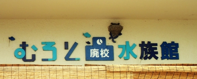 廃校水族館入口
