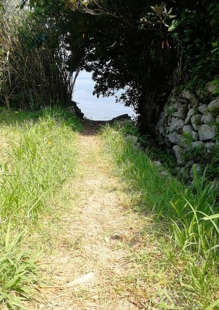 バー浜の小道web