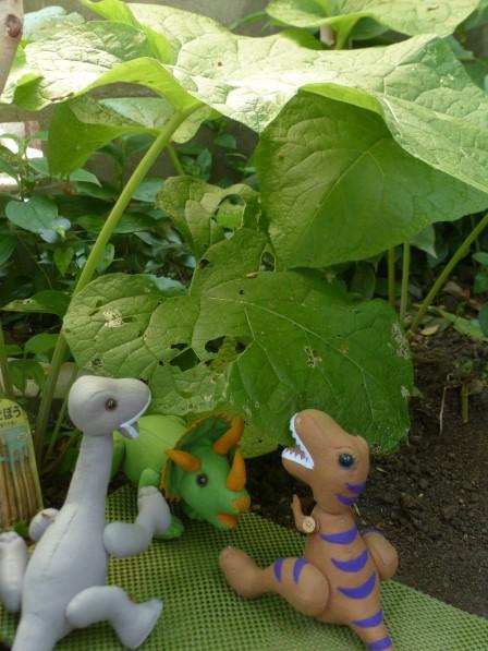 ゴボウ & フェルトの恐竜 1