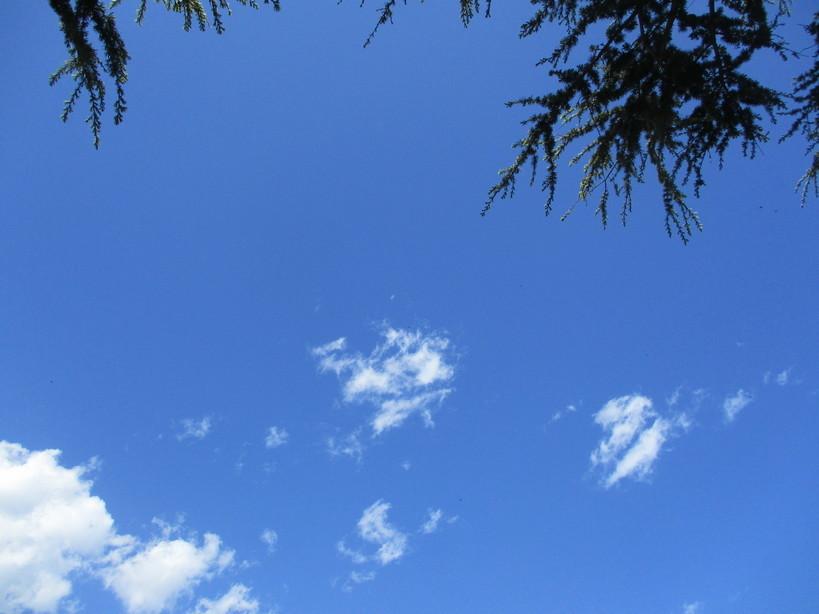 cielo_e_nuvole2_200502