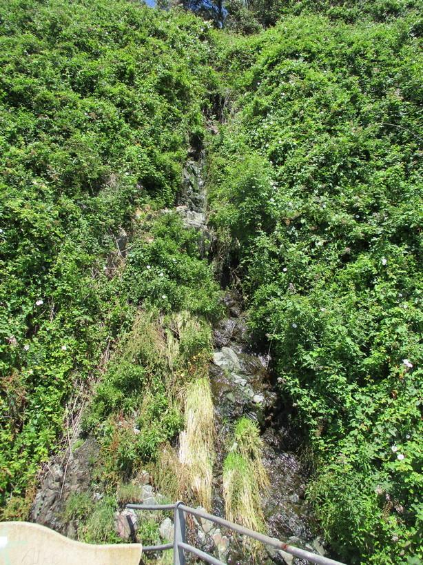 cascata200620