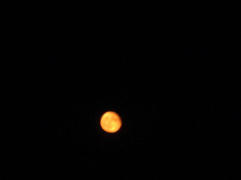 luna_rossa200707