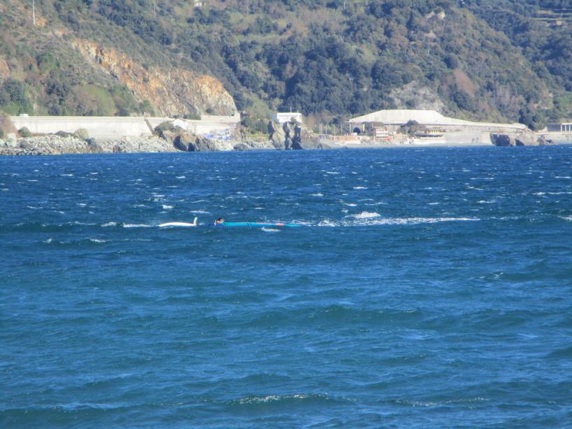 wind_surfin4_201121