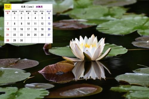 6月カレンダー1 D7T