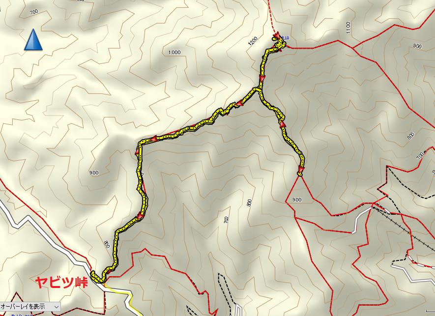 2020大山/地図