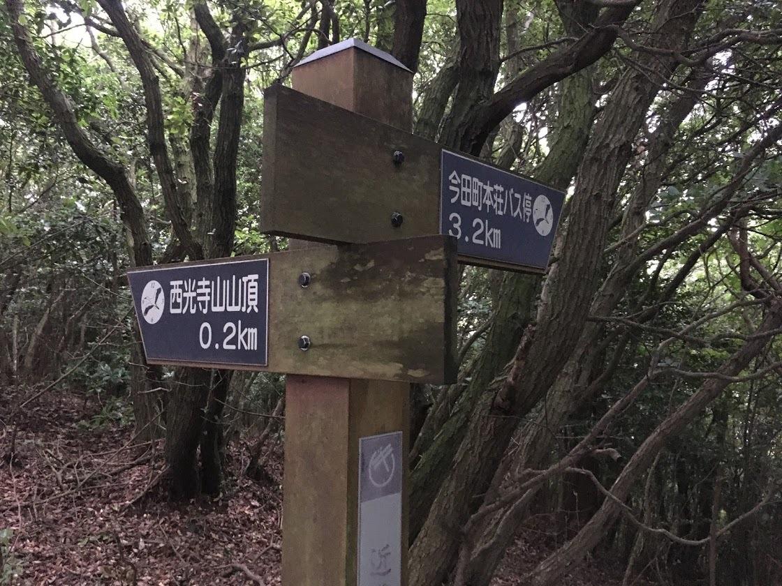2020西光寺山/尾根