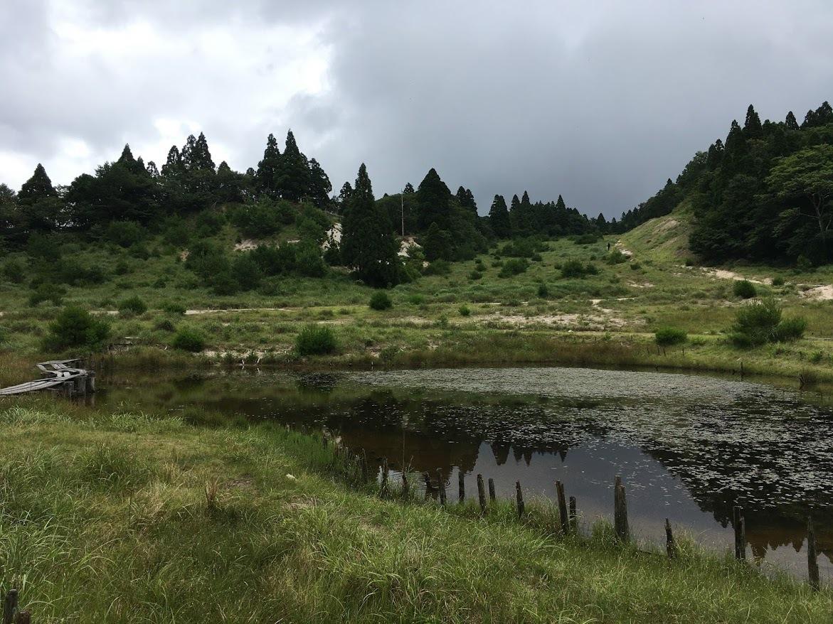 2020武奈ヶ岳/八雲ヶ原
