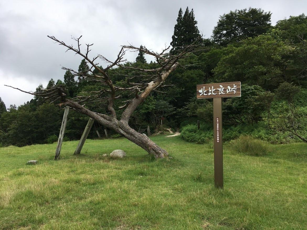 2020武奈ヶ岳/北比良峠