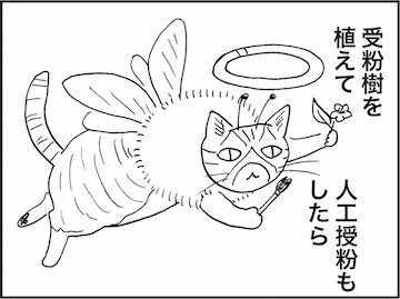 kfc01920-2
