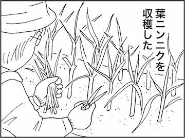 kfc01930-1