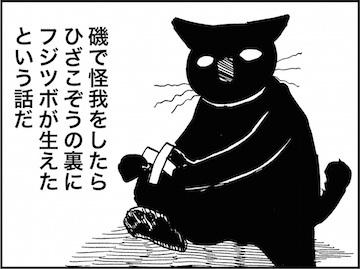 kfc01940-6