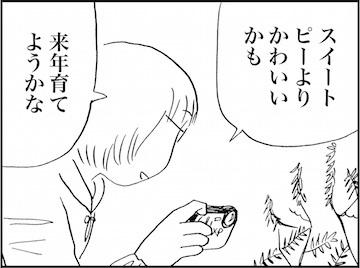 kfc01954-3