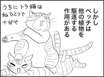 kfc01954-4