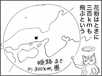 kfc01978-7