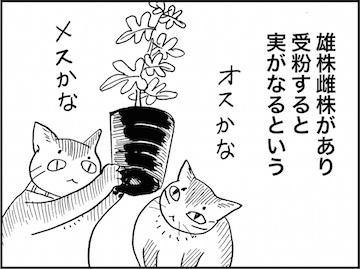 kfc01989-6
