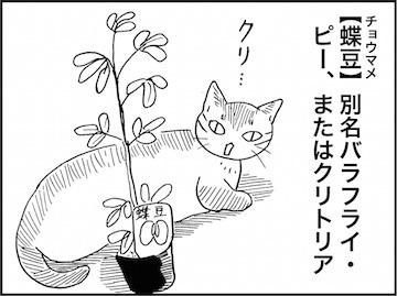 kfc02029-4