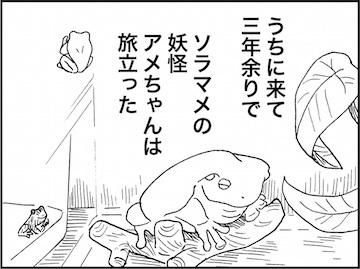 kfc02030-6