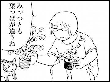 kfc02036-4