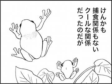 kfc02051-6