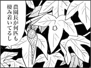 kfc02059-3