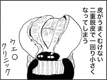 kfc02084-6