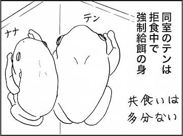 kfc02100-3