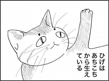 kfc02103-4