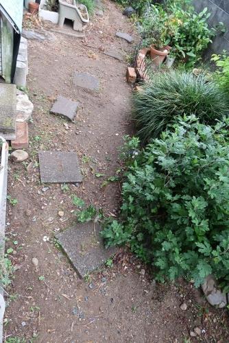 泥んこの庭