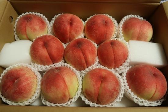 頂いた桃パラダイス