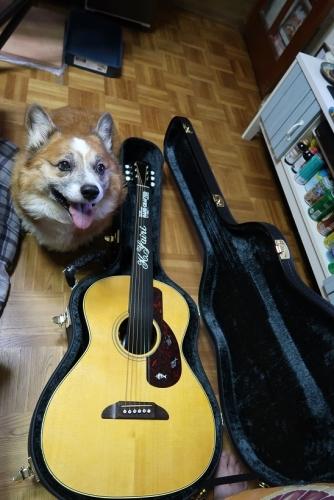 ヤイリギター BEGIN