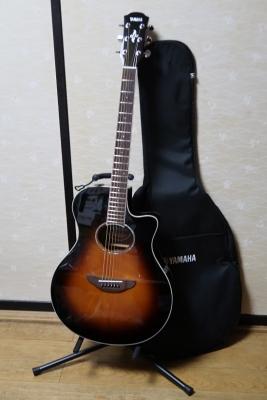 YAMAHA APEX600