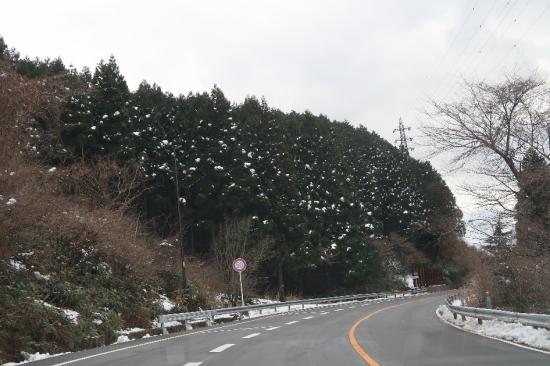 箱根越え 雪