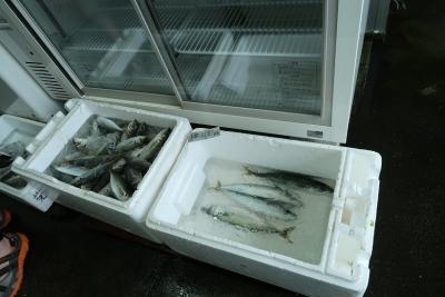 お魚屋さん