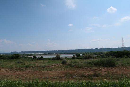 水量が少ない天竜川