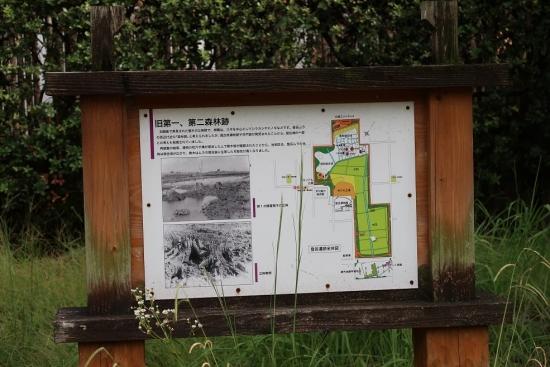 登呂遺跡 旧第一森林跡