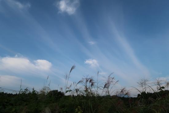 栃木 流れる雲