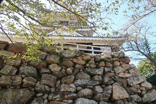 浜松城石垣