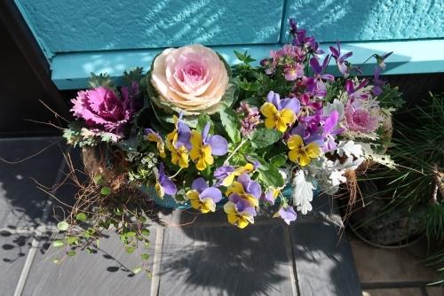 道の駅 ろまんてぃっく村で買ったお花
