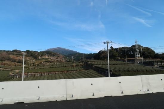 第二東名 茶畑