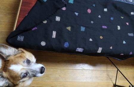 ストールと犬