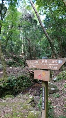 20-09-21-12-42-21-329_photo.jpg