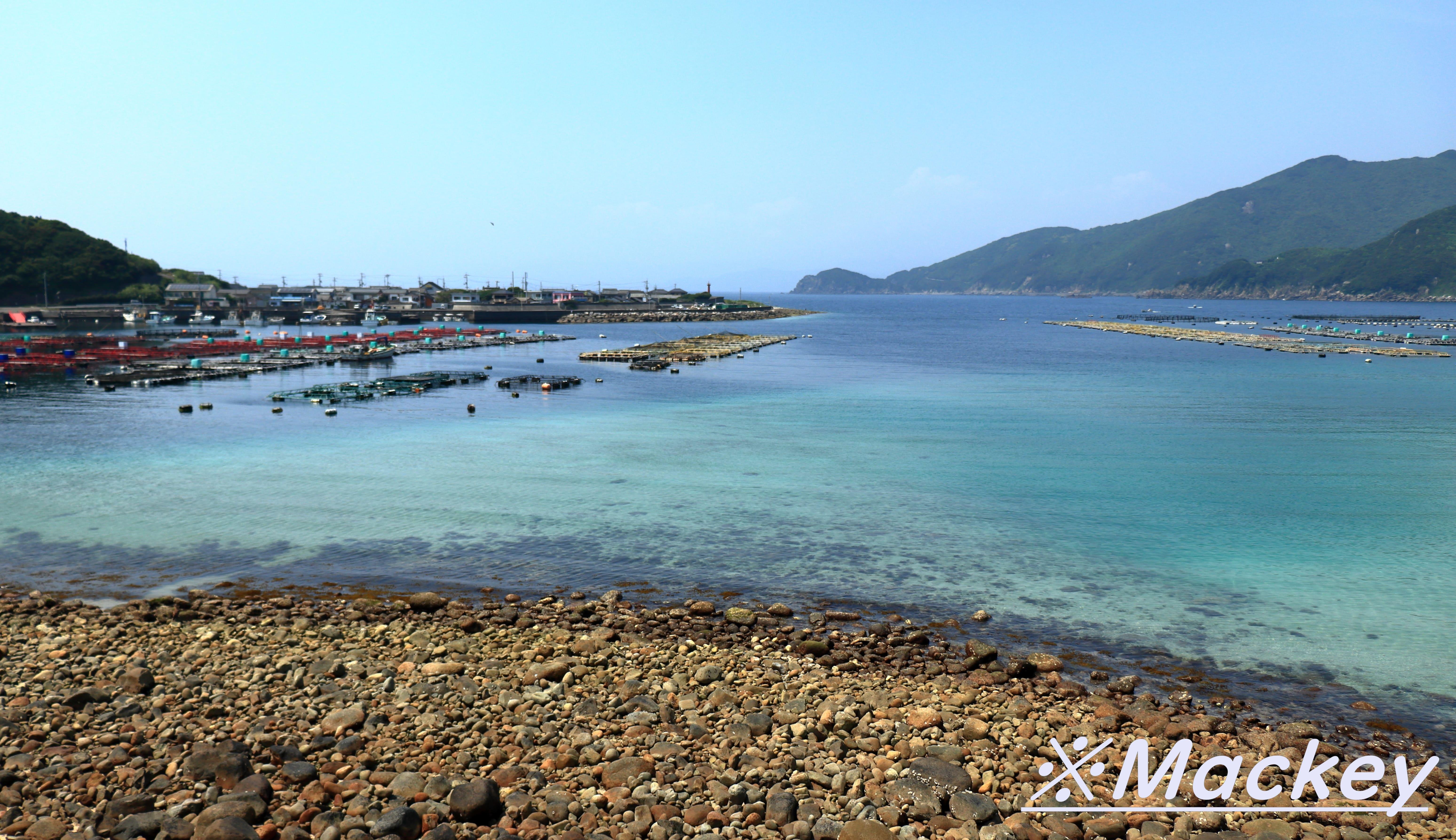 柏島IMG_5719
