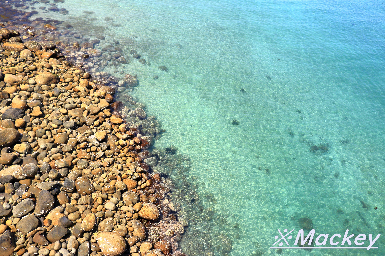 柏島IMG_5726