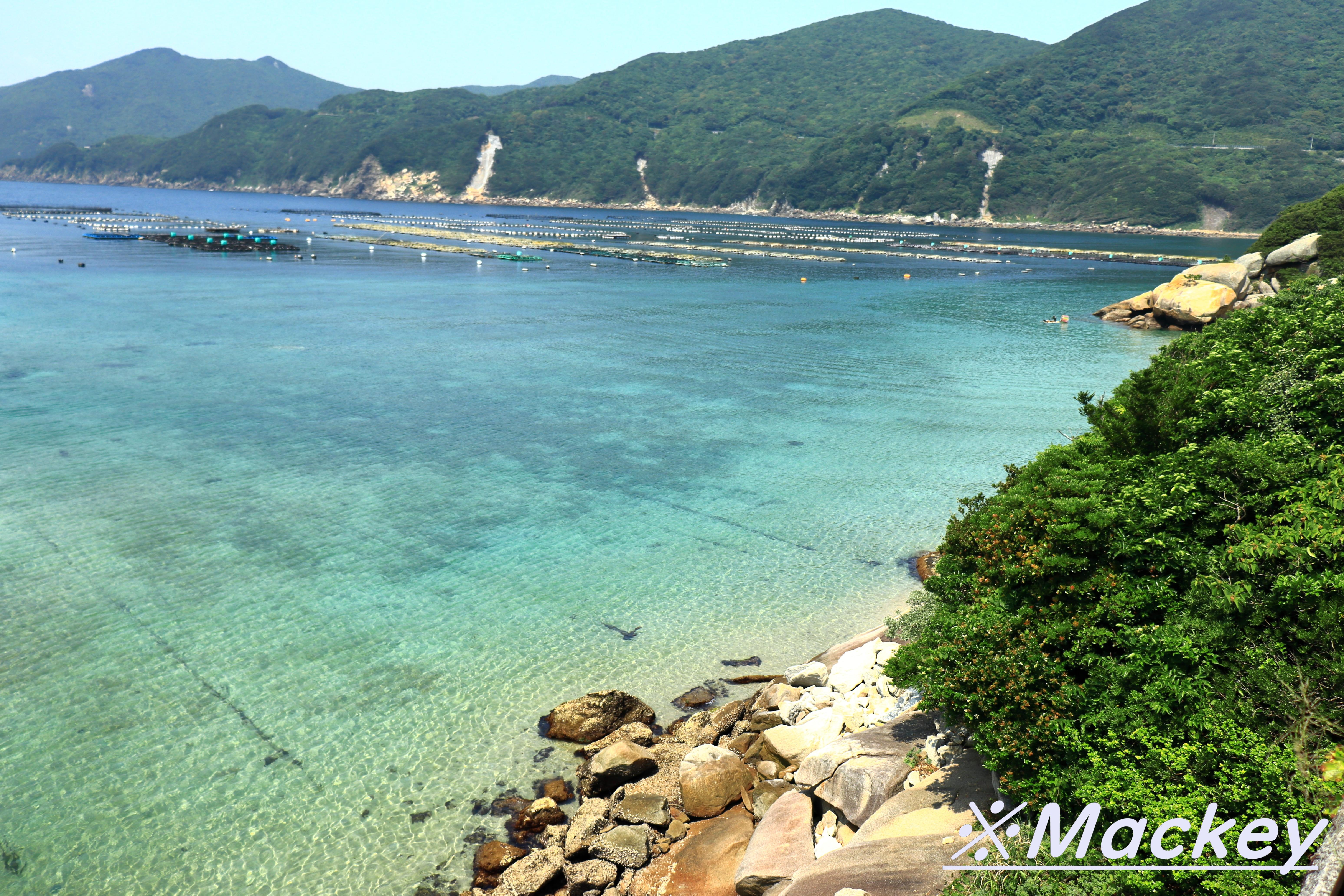 柏島IMG_5734