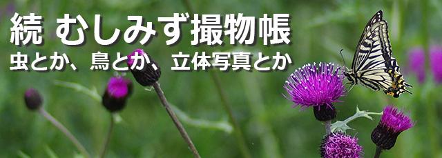 ポートフォリオ (清水哲哉、manaby長町駅前事業所)