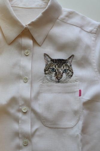キウイシャツ