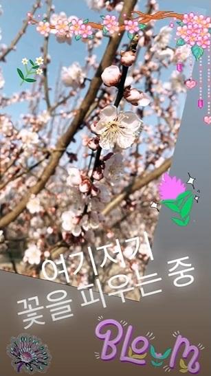 danedw_200329.jpg