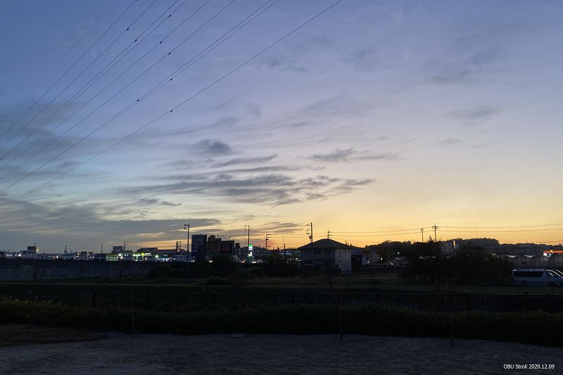 IMG_1183-T.jpg