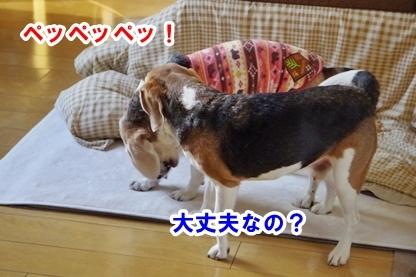 ぶちゅ 3