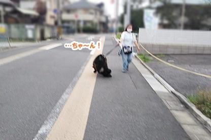 宮本さん 1